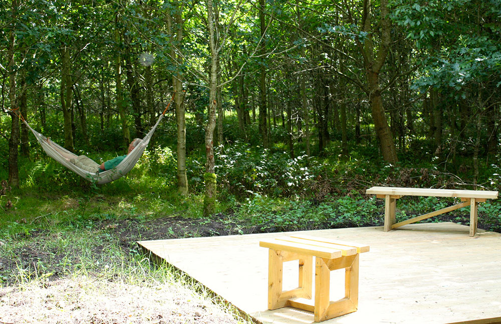 Relaxation Area in the Woods